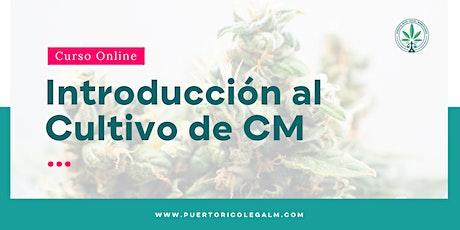 NUEVO: Introducción al Cultivo de CM entradas