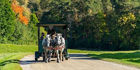 Horse-Drawn Wagon Rides - November 14, 2021 tickets