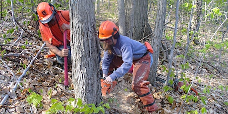 Level 1 of Game of Logging Chainsaw Training, April 21, 2022 tickets