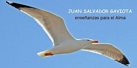 JUAN SALVADOR GAVIOTA, enseñanzas para el Alma entradas
