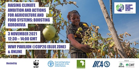 Raising climate ambition for agriculture & food systems: Boosting Koroniva tickets