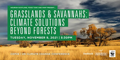 Grasslands and Savannahs: Climate Solutions Beyond Forests at the COP26. tickets