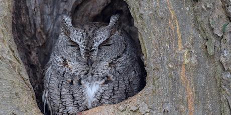 Owl Prowl tickets