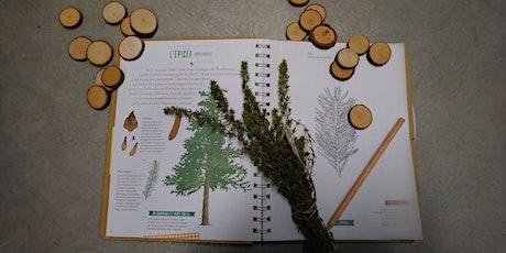 """Atelier """"Création d'un Herbier - Forêt et Climat"""" (20€ la semaine) billets"""