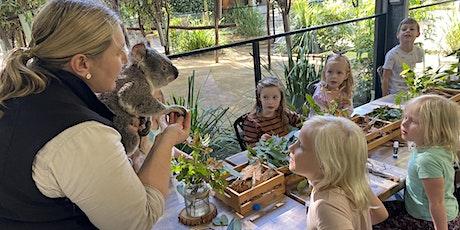 NaturallyGC Koala Kids tickets