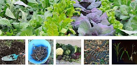 March: Sustainable Gardening Australia Workshop Series - Yinnar tickets