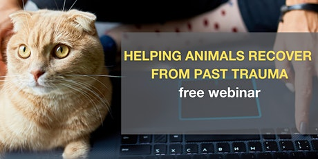Helping Animals Recover from Trauma – Free Webinar tickets
