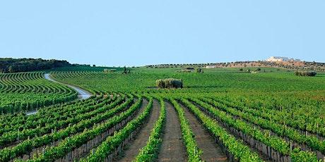 Masterclass Amastuola Organic Wine biglietti