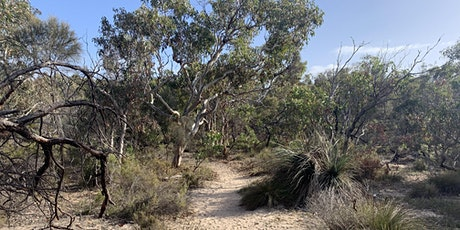 Native Bushland Walk & Talk tickets
