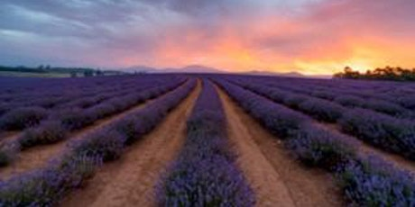 Agritourism Insights and Networking Event - Northern Tasmania tickets