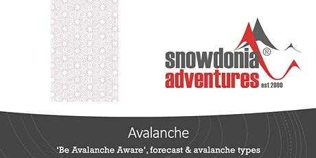 Basics of avalanche forecast and main avalanche types tickets