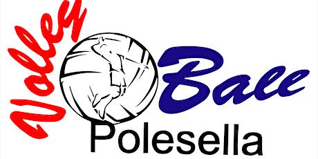 VOLLEYBALL POLESELLA - FREE VOLLEY NES VOLLEY biglietti