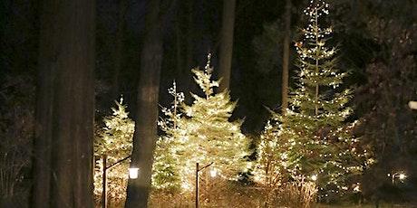 Night Lights – January 8 tickets