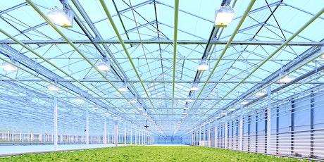 Greenhouse lighting control webinar tickets