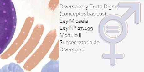 Ley Micaela - Modulo II - Diversidad y trato digno (conceptos básicos) boletos