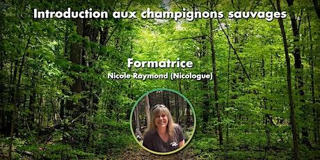 Introduction aux champignons sauvages du Québec - 03  Novembre 2021  -19h billets