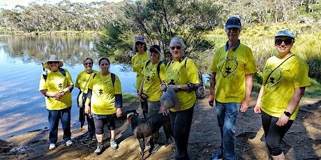 Walk n Talk For Life Blue Mountains - November Walk at Wenty Falls Lake. tickets