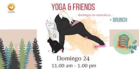 Yoga & Friends entradas