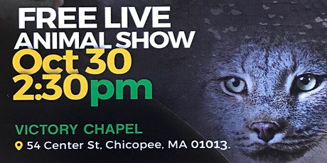 Live Animal Show tickets