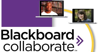 STOP! Collaborate and Listen: Video Web Conferencing using Blackboard