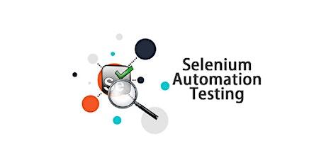 Master Selenium Testing in 4 weekends training course in Heredia entradas