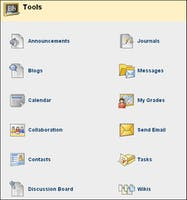 Learn How To Use Blackboard Interactive Tools