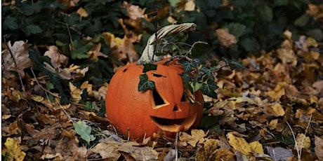 Cashel Forest Halloween Weekend tickets