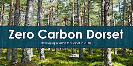 Dorset 2030: Preliminary Report Launch tickets