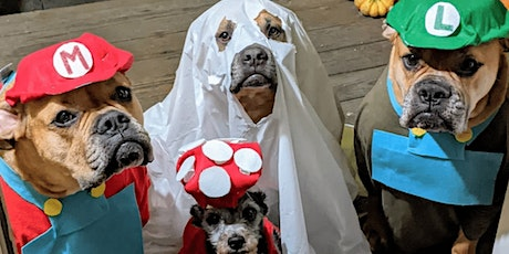 7th annual Halloween community pack walk with a trainer tickets