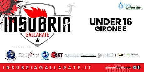 Under 16 - TECNOMAMA INSUBRIA GALLARATE vs VBC 16 BLU biglietti
