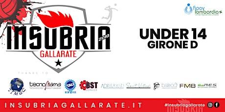 Under 14 - TECNOMAMA INSUBRIA GALLARATE vs UNET E-WORK BUSTO ARSIZIO biglietti