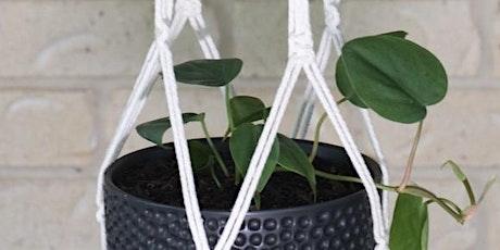 Macrame Pot Plant hanging Workshop tickets