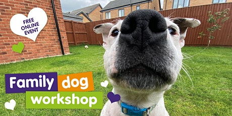 Family Dog Workshop - Live Zoom Event tickets