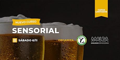 CURSO DE ANÁLISIS SENSORIAL DE CERVEZA entradas