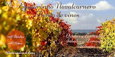 Ruta Cultural y de Enoturismo en Navalcarnero con cata de vinos entradas