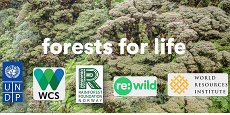 COP26 Side Event: Emerging Policy Approaches for Intact Forest Conservation tickets