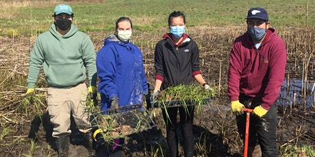 Take Action on Climate Change in the Forest Preserves tickets