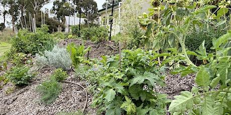 River garden Blitz and Sustainable Gardening Day tickets