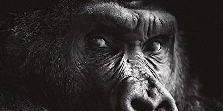 """Presentación del libro"""" Yo, animal"""" entradas"""