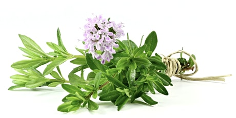 Natural Menopause: how herbs can help with Author & Herbalist Anita Ralph tickets