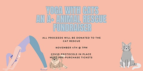 Yoga With Cats- Fundraiser for A+ Animal Rescue tickets