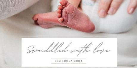 The Postpartum Plan tickets
