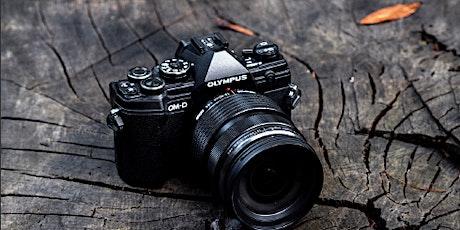 Olympus Photowalk - Bussaco National Park bilhetes