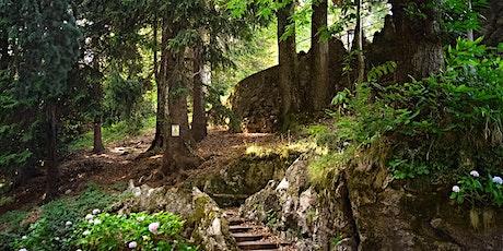 Gli alberi poeti. Passeggiata per grandi e piccini tickets