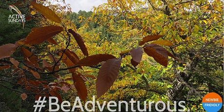 ActiveChestnutHike Παρνωνας: Καρυες Autumn Edition tickets