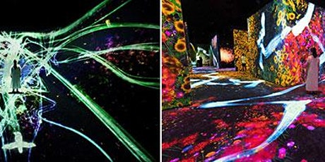 Asian Art Museum—teamLab: Continuity Day Trip from Palo Alto JCC tickets