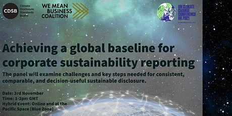 Achieving a global baseline for corporate sustainability reporting tickets