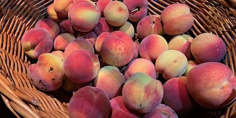 Peach Tree Fruit Tree Guild Workshop tickets