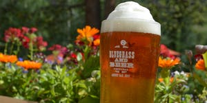 20th Annual Keystone Bluegrass and Beer Festival...