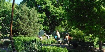 Rain Garden Work Day